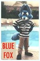 click for Blue Fox Page
