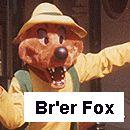 Br'er Fox Costume