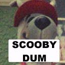 Scooby Dum