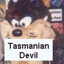 Tazmanian Devil Costume