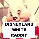 Disney's White Rabbit